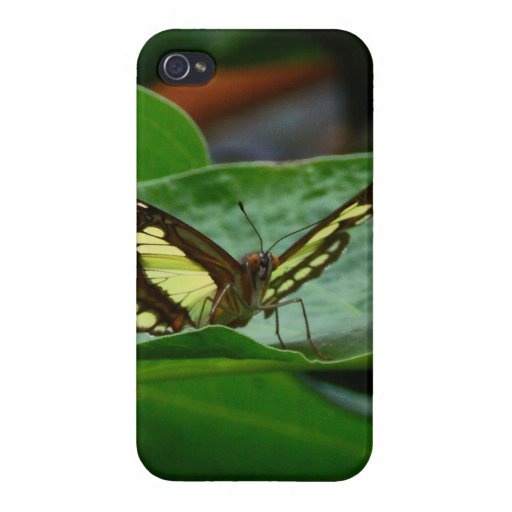 Butterfly Cover For iPhone 4