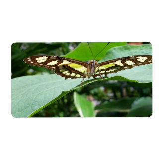 Butterfly Shipping Label
