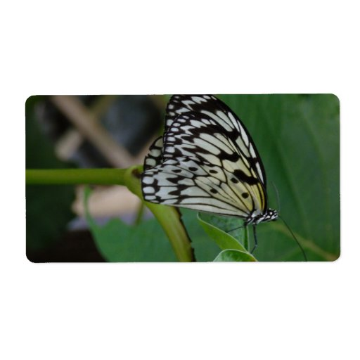 Butterfly Personalized Shipping Label