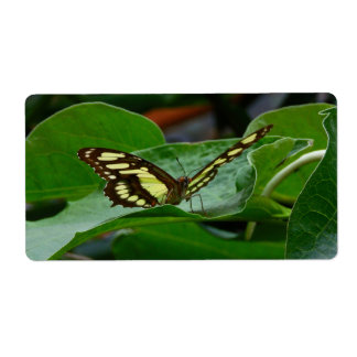 Butterfly Personalized Shipping Labels