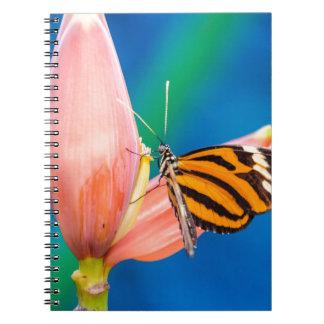 Butterfly Landing on Purple Flower Notebooks