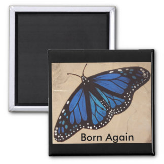 butterfly                                      ... magnet