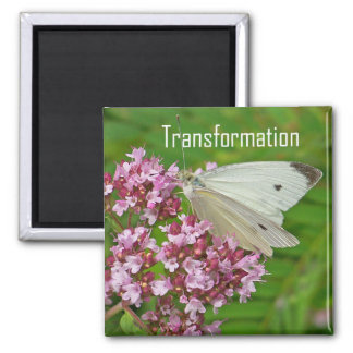 Butterfly Magnet, Transformation Magnet