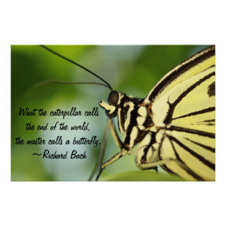Butterfly Master Poster