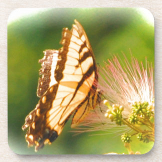butterfly mimosa tree coaster