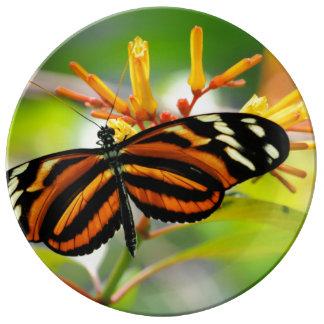 Butterfly Morning Porcelain Plate