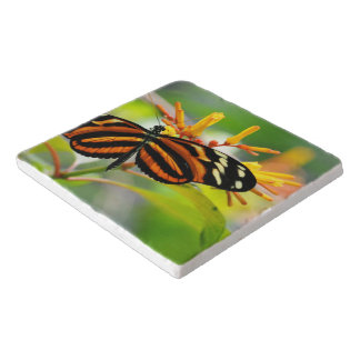 Butterfly Morning Trivet