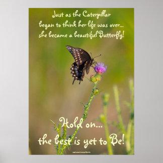 Butterfly Motivational Inspirational Photo Poster