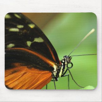 Butterfly Mouse Mouse Pad