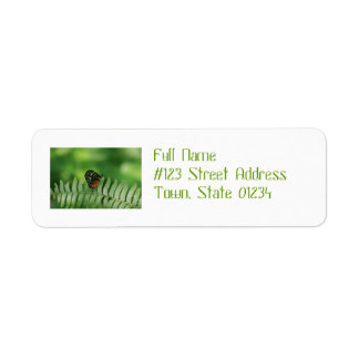 Butterfly Nature Return Address Labels