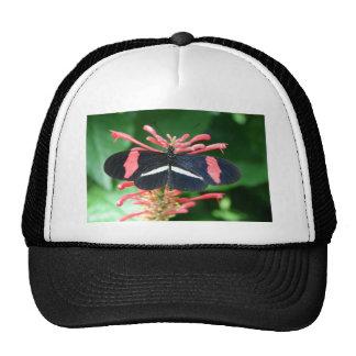 Butterfly of Splendor Handbag Get Ready for SPRING Hat