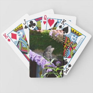 Butterfly on a Flower Bicycle Playing Cards