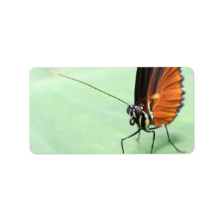 Butterfly on a Leaf. Custom Address Labels