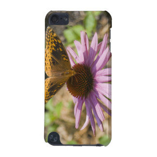Butterfly on a Purple Coneflower iPod Touch (5th Generation) Cases