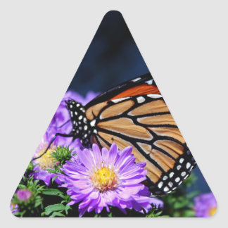 Butterfly on Asters III Triangle Sticker