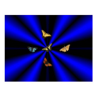 Butterfly on black and blue rainbow postcard