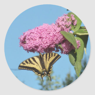 Butterfly on Butterfly Bush Classic Round Sticker