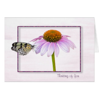 Butterfly on Cone Flower Card