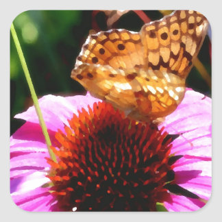 Butterfly on Coneflower Magic Square Sticker