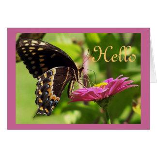 Butterfly on daisy card