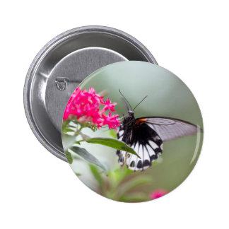 butterfly on flower 2 inch round button
