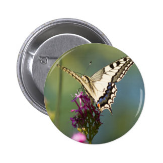 butterfly on flower 2 inch round button