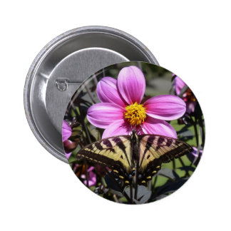 Butterfly on Flower Blossom Pinback Buttons
