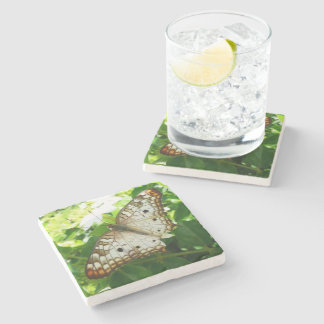 Butterfly on Jasmine Tropical Nature Photography Stone Coaster