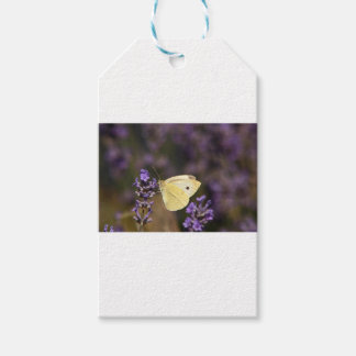 Butterfly on lavender gift tags