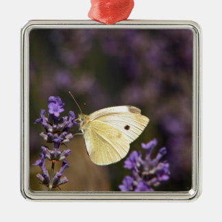 Butterfly on lavender metal ornament