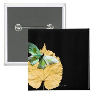 Butterfly on leaf 2 inch square button