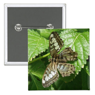 Butterfly on Leaf Pin