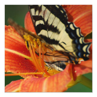 Butterfly on Lily 5.25x5.25 Square Paper Invitation Card