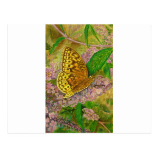 Butterfly on purple butterfly bush Buddleia david Postcard