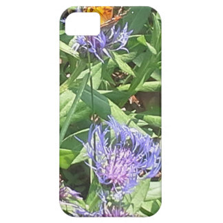 Butterfly on Purple Coneflower iPhone 5 Case