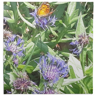 Butterfly on Purple Coneflower Napkin