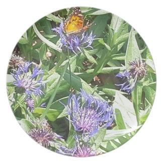 Butterfly on Purple Coneflower Plate