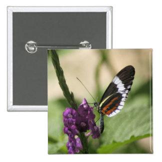 Butterfly on Purple Flower Button