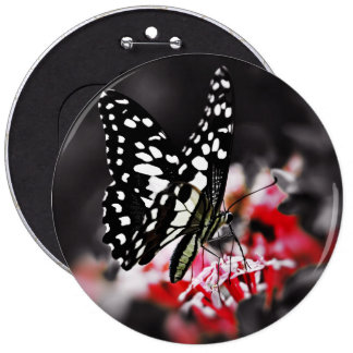 Butterfly on Red Flower 6 Inch Round Button