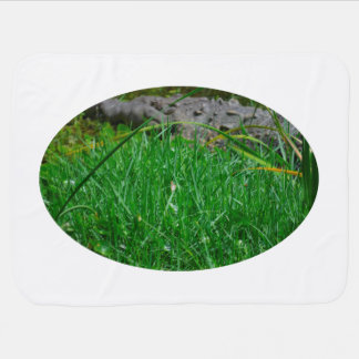 butterfly on reed alligator background receiving blankets