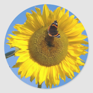 Butterfly on Sunflower Classic Round Sticker