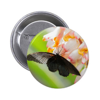butterfly on the flower 2 inch round button