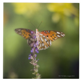 Butterfly on wildflowers ceramic tiles