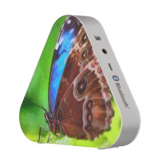 Butterfly painting blueooth speaker