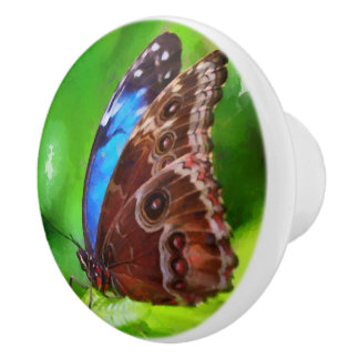 Butterfly painting ceramic knob