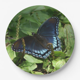 Butterfly, Paper Plates. Paper Plate
