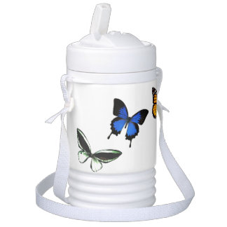 Butterfly Pattern Igloo Beverage Cooler