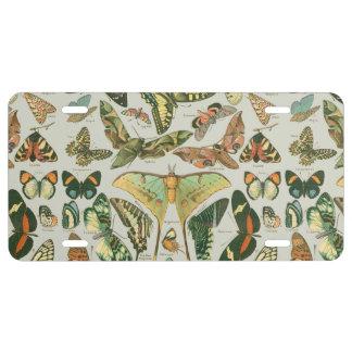 Butterfly pattern license plate