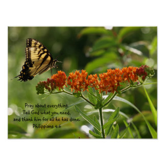 Butterfly Photo Philippians Bible Verse poster