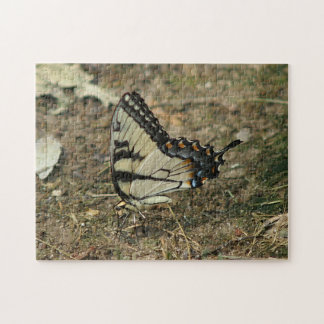 Butterfly, Photo Puzzle. Jigsaw Puzzle